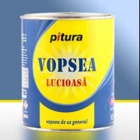 Vopsea lucioasa Pitura acum in noul ambalaj economic 0.6 ...