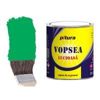 Vopsea Pitura Verde Luminos 25 kg Kober