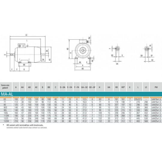 Motor electric trifazat 0.75 Kw, 2850 rot/min MA2AL71 Electroprecizia, tip B3 - cu talpa