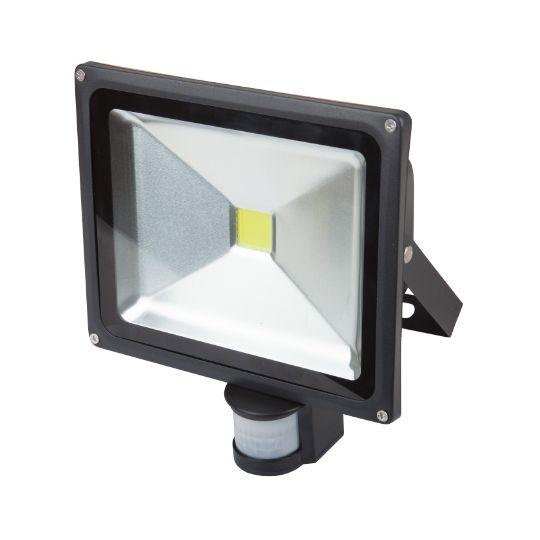 Proiector cu LED 30W, lumina rece EVO
