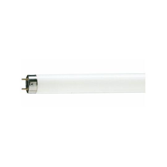 Tub neon fluorescent TL-D 18W, G13, T8, 604 mm, lumina rece 6200K, Philips