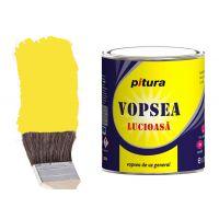 Vopsea Pitura Galben Sulf 0.6 l Kober