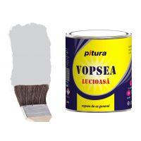 Vopsea Pitura Gri Deschis 0.6 l Kober
