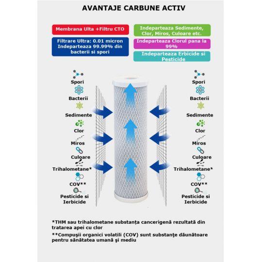 Cartus carbune activ PP 10/9 inch Everpro