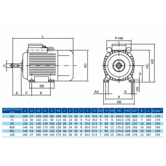 Motor monofazat 2.2 Kw, 2810 rot/min MMF90L Electroprecizia